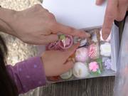 美しい細工がさすがの京菓子
