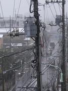 雪の日の電信柱