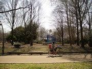 春の光が丘2012