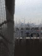 結露の窓ガラス
