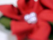 ポインセチアの花飾り