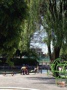 溜池公園2013