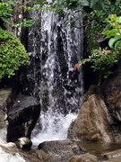 水車公園の滝