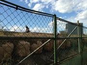 建設中とフェンス