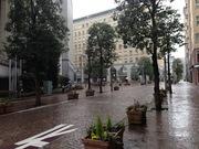 雨のイタリア街