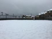 空き地の仮設トイレも雪景色