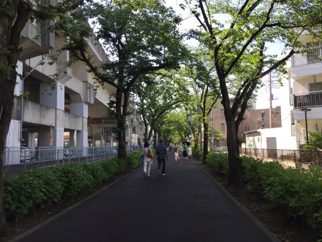 五月晴れの緑道