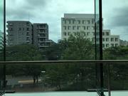 大学病院の窓から