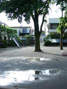 児童公園の水たまり
