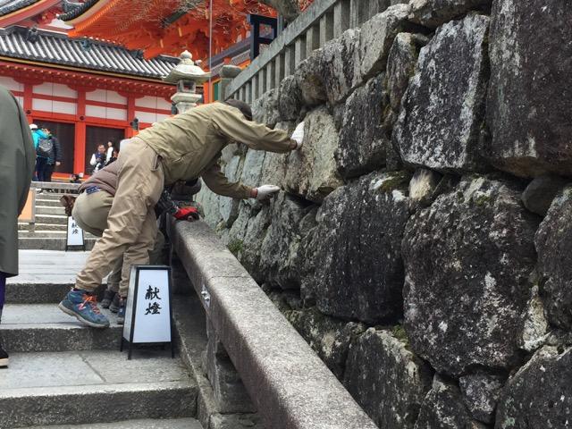 石垣の修理