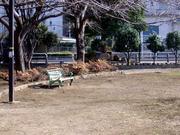 春間近の公園
