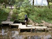 喜多院の池