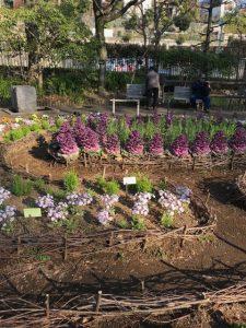 整頓された花壇