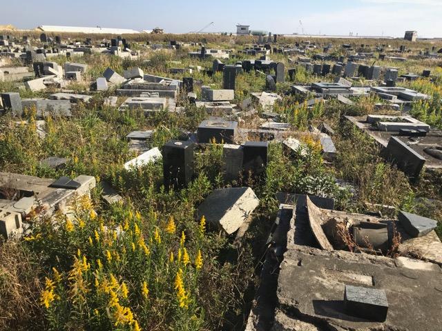 荒れた墓地