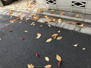 散り散りに散つて落葉のタングラム