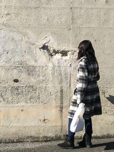 淑気満つ古代壁画の浮かぶ壁