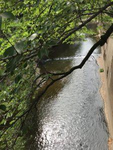 加茂の川床抹茶ゼリーを突き崩す