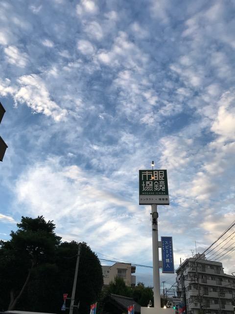 鳥渡る空や真綿のちぎれ雲