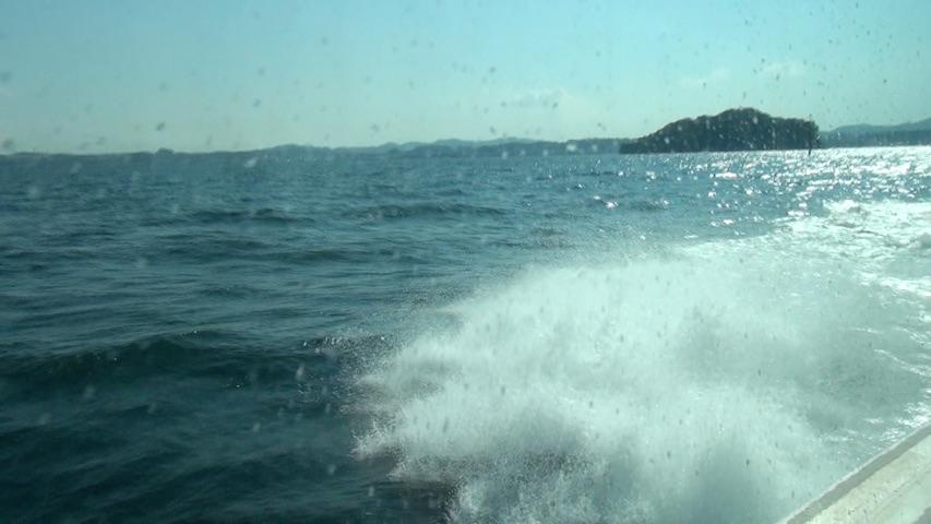 白波の飛ばす飛沫や秋の航
