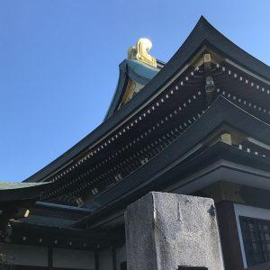 青空に春光放つ寺の鴟尾