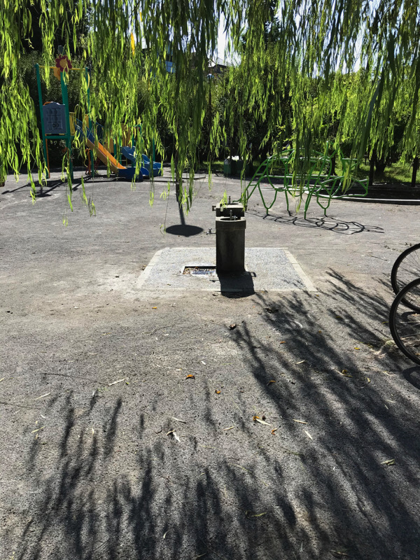 水飲み場へ黄ばむ柳の影迫る