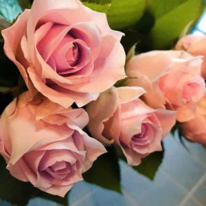 職退きし日の花束や冬薔薇