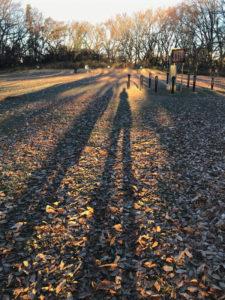 落武者の影よろよろと枯葉の地