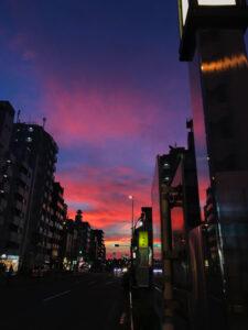 夕焼けの街やそろそろ夜の蝶